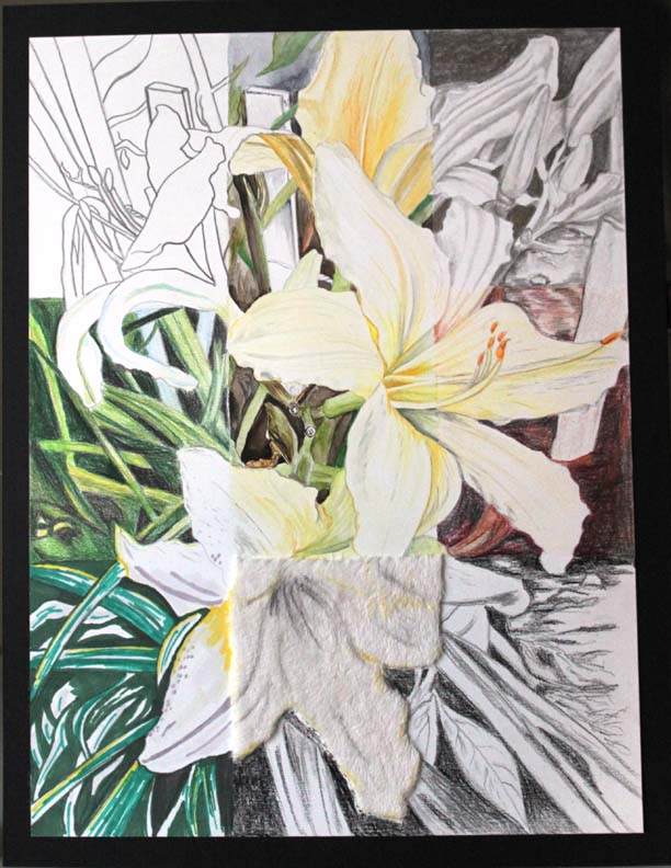 Garden Lillies in 9 Squares