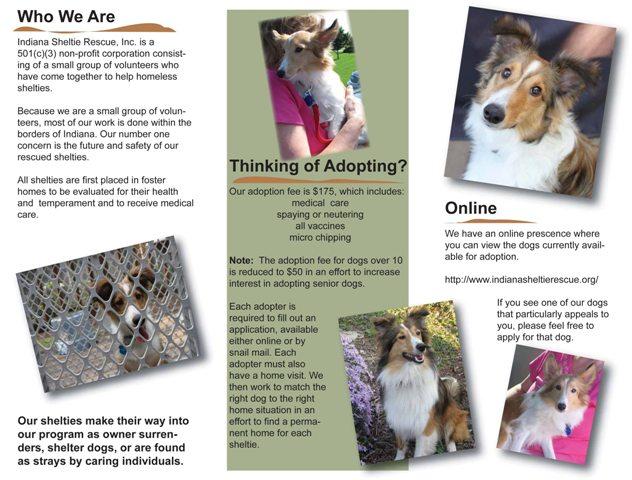 Indiana Sheltie Rescue brochure