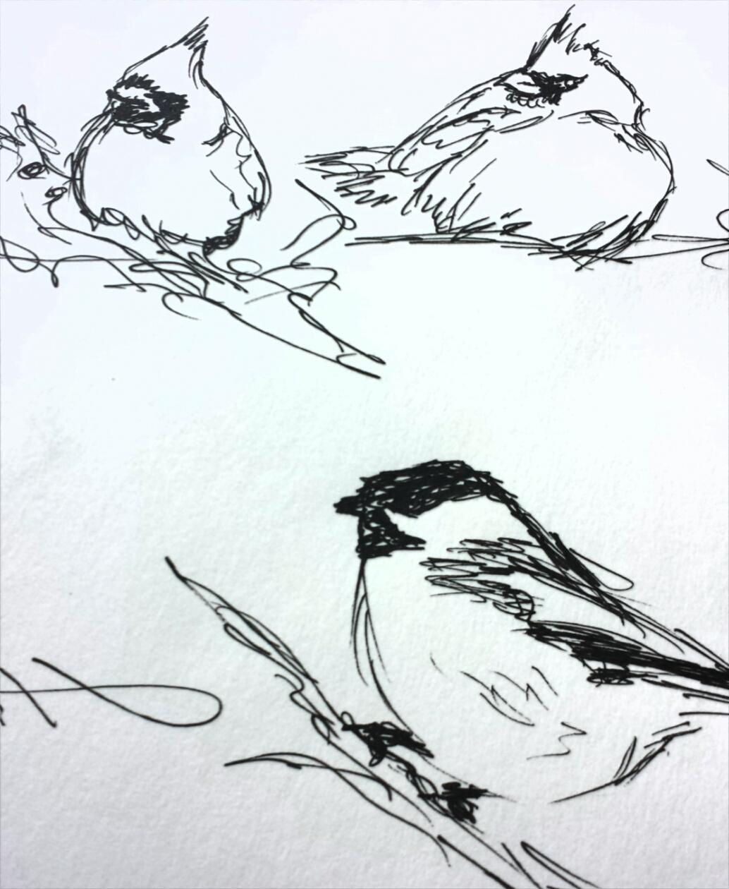 winter-birds-3