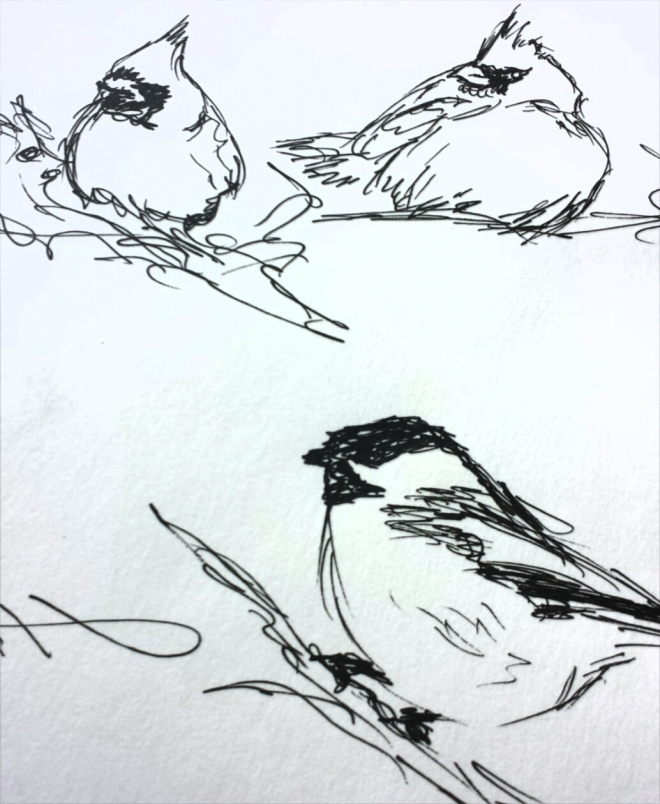winter-birds-3
